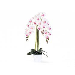 Τεχνητό Φυτό Ορχιδέα 70 cm Inkazen 40080808